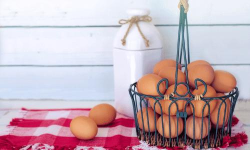 Como escolher bons ovos - Blog da Spice